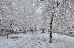 Opad śniegu na ulicie - zima miastowy krajobraz przy śnieżną pogodą obraz royalty free
