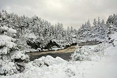 Opad śniegu przy Dużą rzeką w Avalon półwysepie, wodołaz, Kanada fotografia royalty free