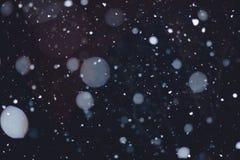 Opad śniegu przy nocą Zdjęcia Stock