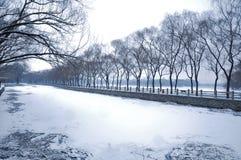 Opad śniegu w lato pałac Obrazy Royalty Free