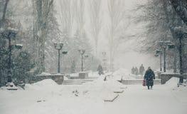 Opad śniegu w mieście Fotografia Stock