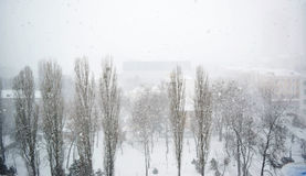 Opad śniegu w mieście Fotografia Royalty Free