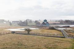 Opad śniegu w wiośnie Zdjęcia Stock