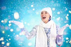Opad śniegu Obraz Stock