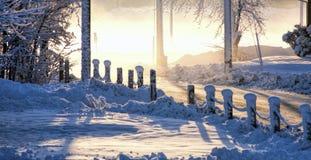 Opad śniegu Zdjęcia Stock