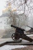 Opad śniegu w parku Obrazy Royalty Free