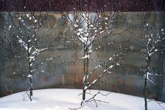 Opad śniegu w zimie Obraz Stock
