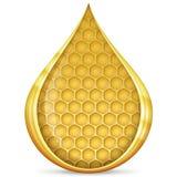 opadowy honeycomb Fotografia Stock
