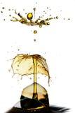 Opadowy karambol Zdjęcia Royalty Free