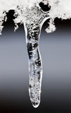 opadowy lód zdjęcie royalty free