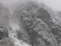 Opadu śniegu himalaje zdjęcia stock