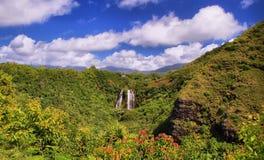 'Opaeka'a tombe sur l'île de Kauai Photographie stock