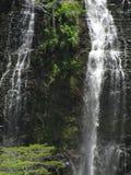 Opaekaa Falls Stock Photos