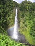 Opaekaa Falls, Kauai Royalty Free Stock Photos