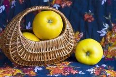 Opaläpplen i en korg Royaltyfri Fotografi