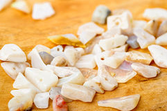 Opal chips on birch Royalty Free Stock Image