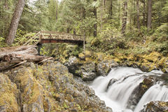 Opal Creek Oregon Hiking. Opal creek Oregon hike.  Old mining town with path, water fall, bridge and forest.  Peaceful hiking Royalty Free Stock Image