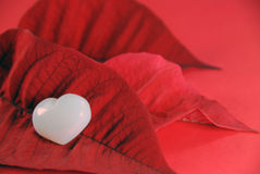 Opal heart on poinsettia leaves Royalty Free Stock Photography