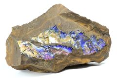 Opala de Boulder Foto de Stock