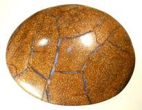 Opale naturelle de Boulder Photographie stock