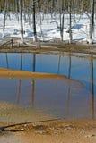 Opalen Pool, de Winter, Yellowstone NP Royalty-vrije Stock Foto