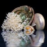 Opalescente Foto de archivo libre de regalías