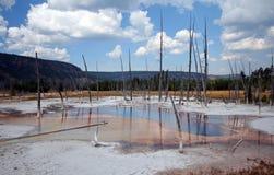 Opalizującego basenu gorąca wiosna w Czarnym piaska gejzeru basenie w Yellowstone parku narodowym w Wyoming usa Zdjęcie Stock