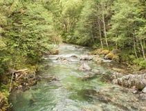 Opalnebenfluss-Oregon-Wandern Lizenzfreie Stockbilder