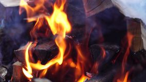 Oparzenie pomarańczowy płomień ogień zbiory wideo