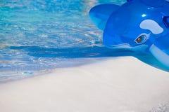 Opblaasbare blauwe vinvis Royalty-vrije Stock Afbeeldingen