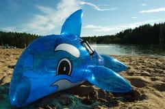 Opblaasbare stuk speelgoed dolfijn Stock Foto's