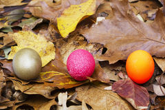 Opciones del huevo de jerarquía Imagen de archivo libre de regalías