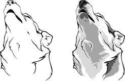 Opciones del lobo del grito ilustración del vector