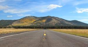 Open空旷地区路风景在秋天 免版税库存照片