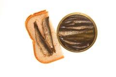 Open能和西鲱三明治在被隔绝的背景的 免版税库存图片