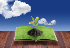 Open 3D book with plant Stock Photography