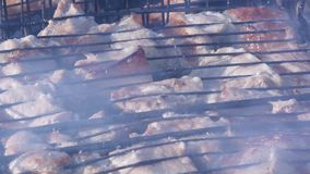 Open-air barbecue, juicy meat on the grill. hot coals and fumes. 4K. Open-air barbecue, juicy meat on the grill. hot coals and fumes stock video