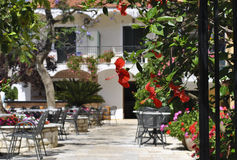 Open-air cafe in Greece. The Greek tavern on open air in a blossoming garden Stock Image