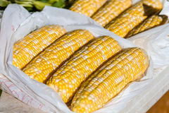 Open Air Farmers Market. Rows of non GMO bi-colored corn in white bags for sale at local farmers market royalty free stock image