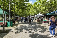 Open-air Farmers market on a sunny day. Outdoor Farmer`s market on a sunny day royalty free stock image
