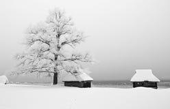 Open-air museum in Estonia Royalty Free Stock Photo