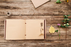 Open album with herbarium on page, free space Stock Photo