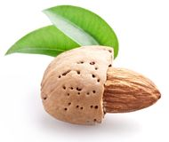 Open almond nut with leaves Royalty Free Stock Photos