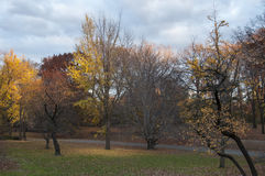 Open area and bike path on Central Park, New York. Photo shot from inside Central Park in New York Stock Photo