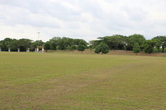 An Open Area in a Park Royalty Free Stock Photo