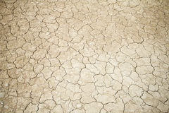 Open arid land Stock Image