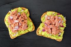 Open avocado sandwiches with tuna against dark slate Royalty Free Stock Photography