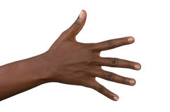 Open back of black woman's hand Royalty Free Stock Photography