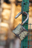 Open padlock on a gate Royalty Free Stock Photos