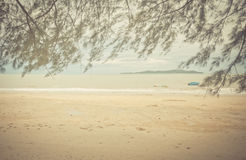 Open beach with leaves framed. In the foreground Royalty Free Stock Photography